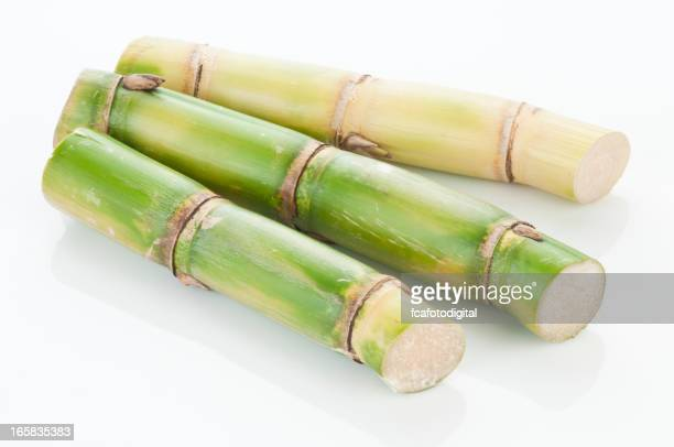 Three sugar cane sticks on white backdrop with clipping path