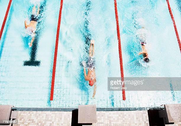Drei Schwimmern kommen zu Sims der pool