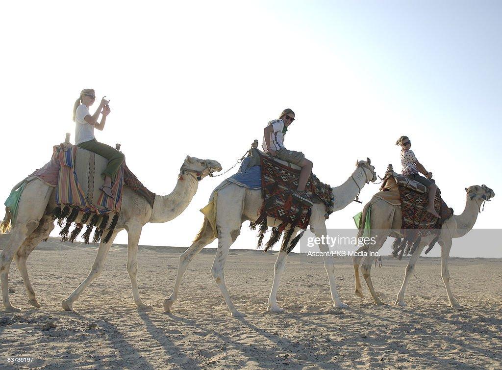Three teenagers ride camels through desert : Stock Photo