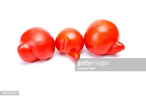 Trois tomates laids : Photo