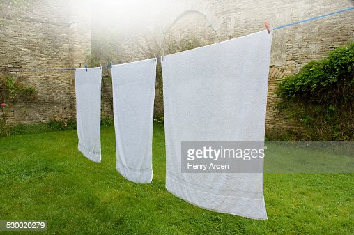 Three white towels on clothes line in walled garden