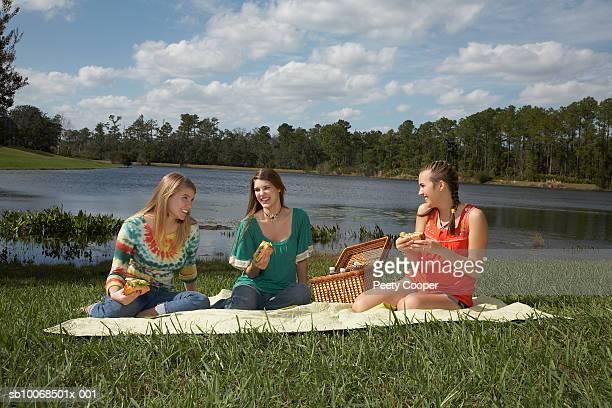 Three women having picnic, smiling
