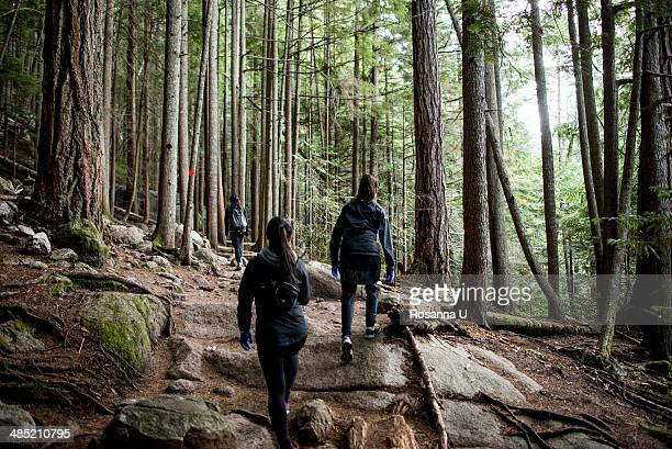 Three young female hikers in forest, Squamish, British Columbia, Canada