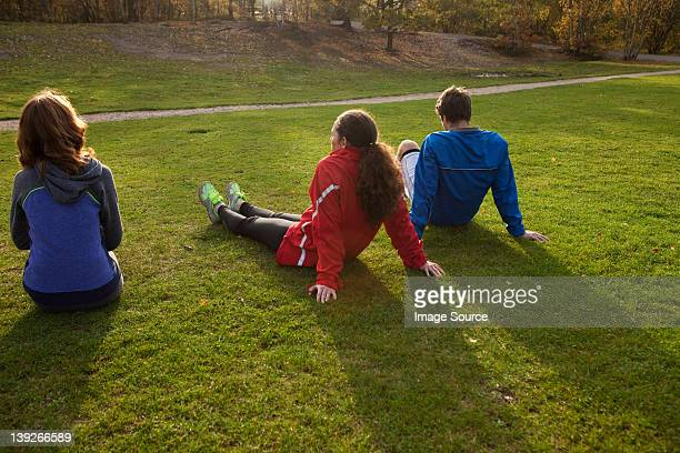 Three young friends sitting on grass in park, rear view