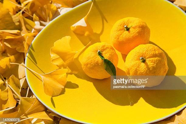 Three Yuzu Fruits on Plate