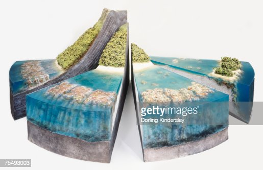 Three-dimensional segmented model of coral reef and surrounding landscape : Stock Photo