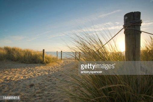 Through the dunes...