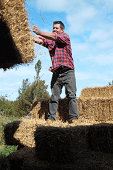 Throwing hay