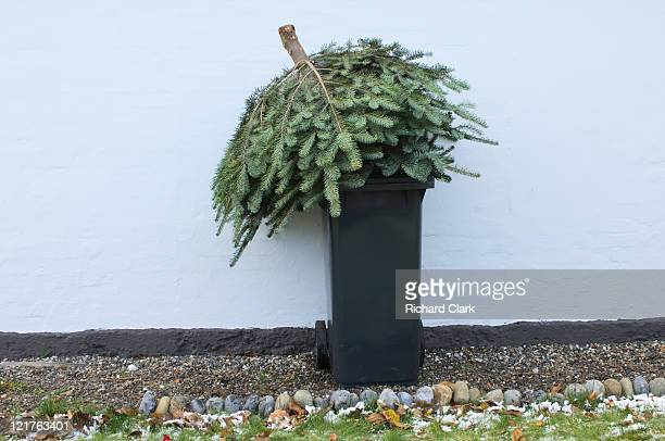 Throwing out christmas tree