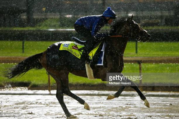 Thunder Snow runs on the track during morning training prior to the 143rd Kentucky Derby at Churchill Downs on May 5 2017 in Louisville Kentucky