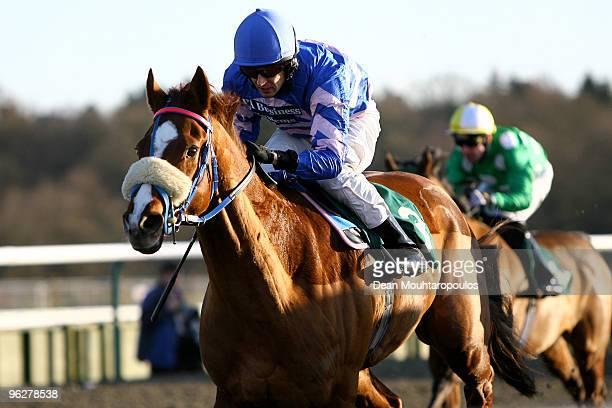 Thunderball riden by Chris Catlin wins the Breathe Spa at Marriott Lingfield Handicap Stakes at Lingfield Park Racecourse on January 30 2010 in...