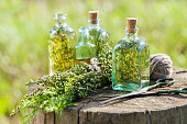 Bottles of thyme, estragon and rosemary essential oil or infusion outdoors, herbal medicine.