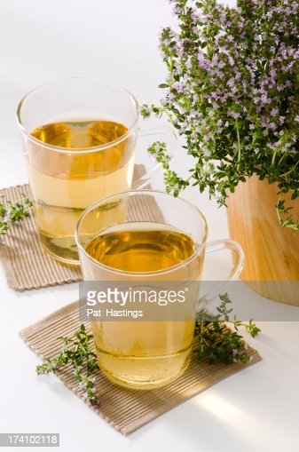 Thyme Herbal Tea : Stock Photo