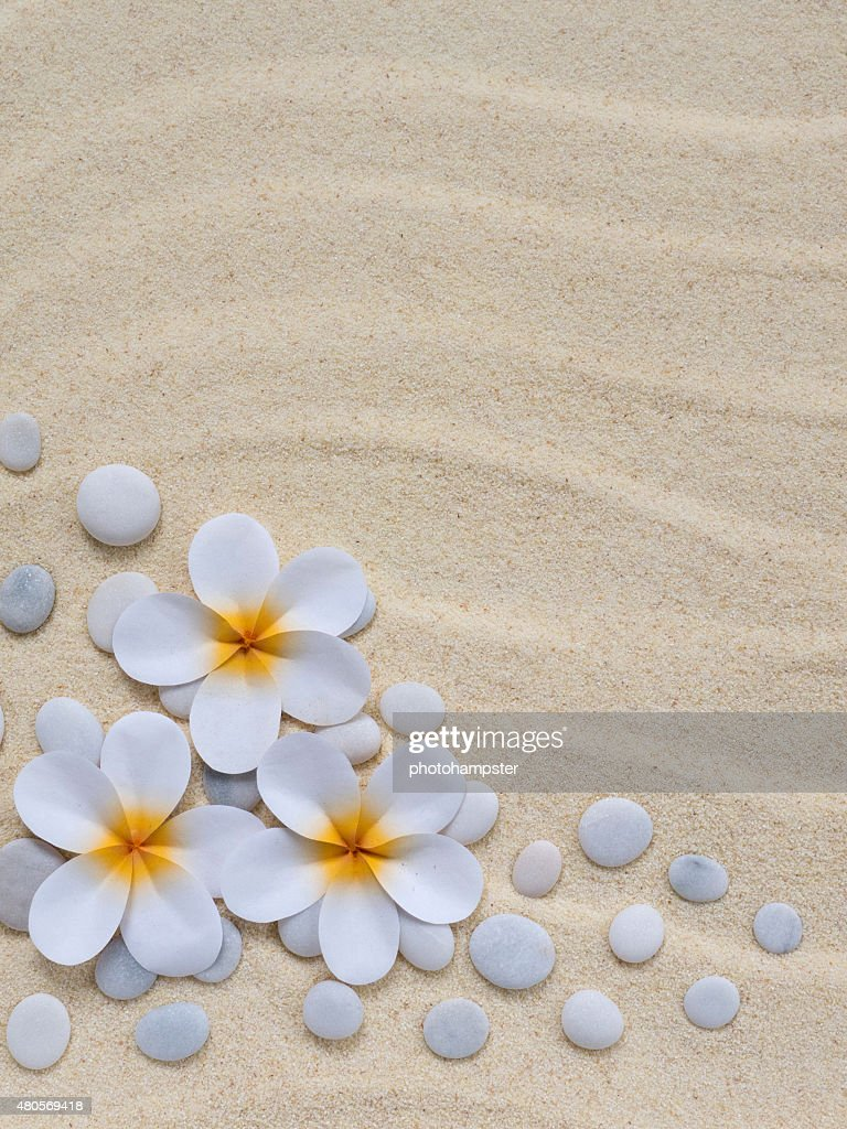 Tiare flowers and stones on the sand : Stock Photo