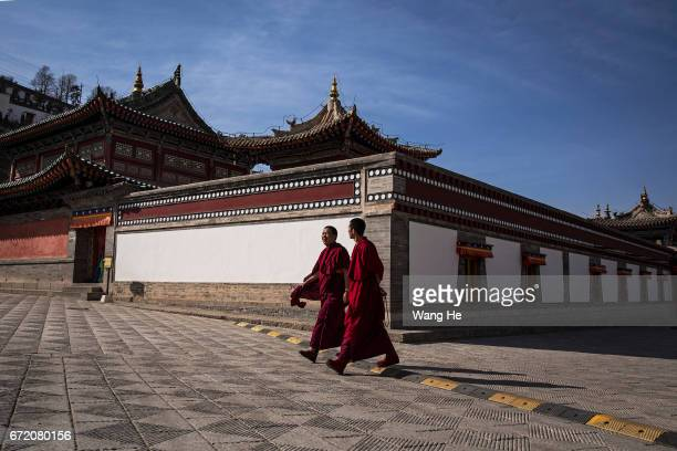 Tibetan Buddhist monks walk in the courtyard of the Kumbum Monastery on April 23 2017 in Xining Qinghai Province Kumbum was founded in 1583 in a...