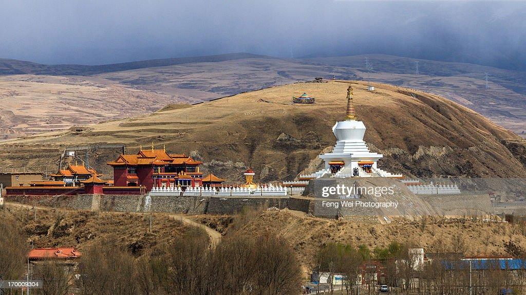 Tibetan singles