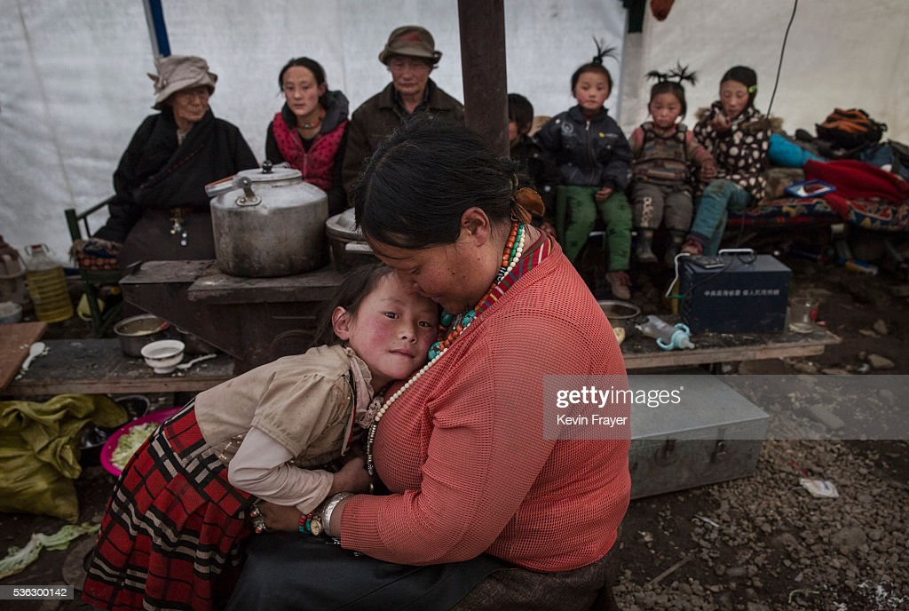 A Tibetan family gather in their tent after a day of working in the mountains at a temporary camp for cordycep pickers on May 23, 2016 on the Tibetan Plateau near Zadoi in the Yushu Tibetan Autonomous Prefecture of Qinghai province. The Tibetan Plateau is home to the cordyceps fungus, also known as caterpillar fungus, is a parasitic spore that thrives in high altitude, low temperature conditions on the Tibetan plateau. While not historically a part of Tibetan culture, cordyceps are a prized ingredient of traditional Asian medicinal treatments that purportedly heal ailments ranging from asthma to impotence to cancer. Demand in China alone has created a booming economy for what Tibetans call yartsa gunbu, or summer grass, winter worm, which sells for up to $50,000 US per pound. As the state-supported cordyceps industry has developed, Tibetans who rely primarily on farming and herding have turned to the weeks-long harvest as a means of earning income to last through the year. The annual gold rush has transformed parts of rural Tibetan areas, generating about 40% of the local economy. However, environmentalists increasingly warn that over-harvesting of cordyceps carries the cost of degradation to mountain grasslands that are essential for yak and cattle grazing. Due to below average rainfall the 2016 harvest is expected to be the lowest on record with many harvesters reporting yields way lower then expectations.