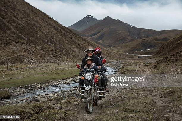 Tibetan family ride on a motorcycle as they return after a day of working in the mountains at a temporary camp for cordycep pickers on May 23 2016 on...