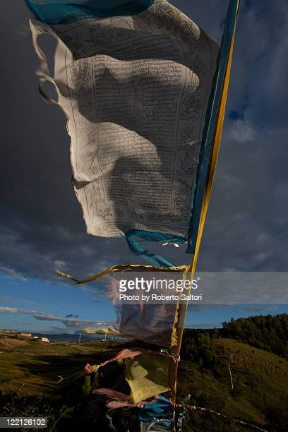 Tibetan flags in wind