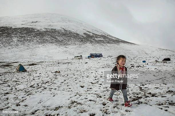 Tibetan nomad boy walks at a temporary camp for cordycep harvesting after a fresh snowfall on the 15th day of Saka Dawa the holiest day of the...