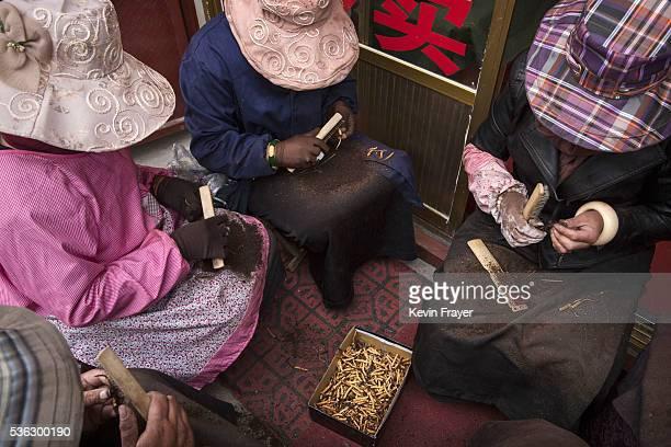 Tibetan nomad women clean cordycep fungus at a market on May 22 2016 on the Tibetan Plateau in Yushu town in the Yushu Tibetan Autonomous Prefecture...