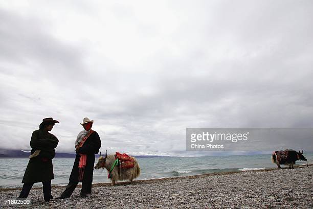 Tibetan nomads wait for tourists with their yaks at the Namtso Lake on August 27 2006 in Dangxiong County of Lhasa Tibet Autonomous Region China...