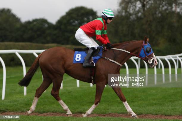 Tifoso ridden by Brian Hughes going to post for the Betfair iPhone Android App Handicap Chase