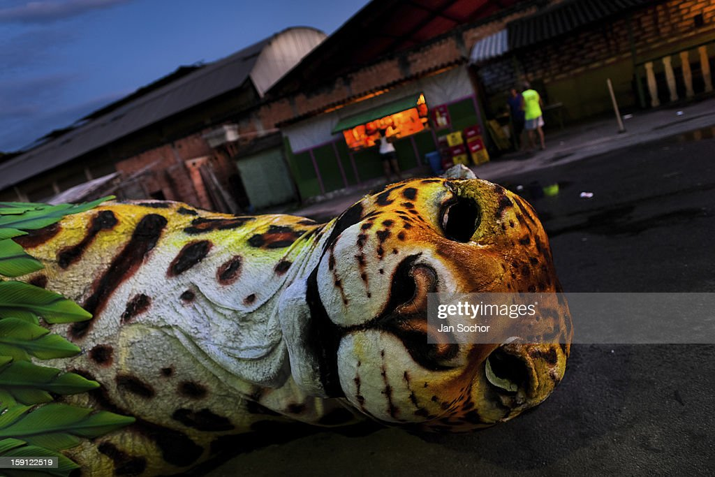 A tiger sculpture seen during the construction process on the work yard behind the carnival workshop in Rio de Janeiro, Brazil, 14 February 2012. The carnival preparations start early in July or August, some 7-8 months before the main samba schools parade at the sambodrome. Samba schools hire teams of professional designers and artists who, according to the original theme selected by the school directors and then featured by the school during the parade, create allegorical floats, costumes, sculptures, music, choreography and the entire school show. However, the most of the everyday work in the carnival hangars is performed by unknown but fully dedicated samba schools members.