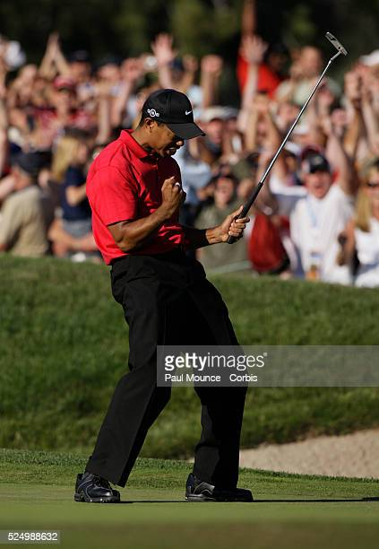 Tiger Woods celebrates after sinking his birdie putt on the 18th hole to force a playoff with Rocco Mediate during the 2008 US Open Golf Championship...