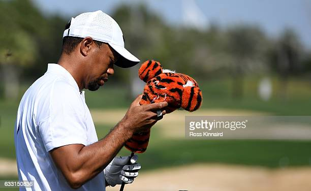 Tiger Woods of the USA on the driving range prior to the Omega Dubai Desert Classic at Emirates Golf Club on January 31 2017 in Dubai United Arab...