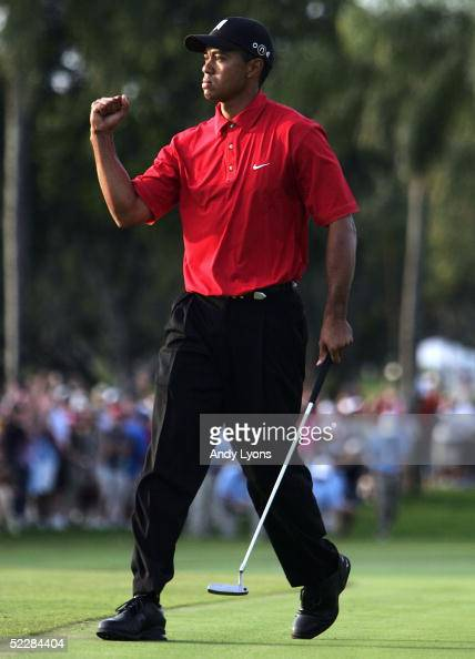 Tiger Woods pumps his fist after making his birdie putt on the par 4 17th hole that would put him the lead for good during the final round of the...