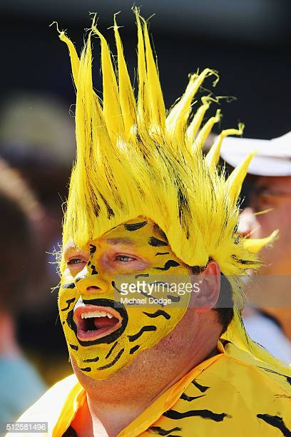 Tigers fan shows his support during the 2016 AFL NAB Challenge match between the Richmond Tigers and the Hawthorn Hawks at Holm Recreation Reserve on...