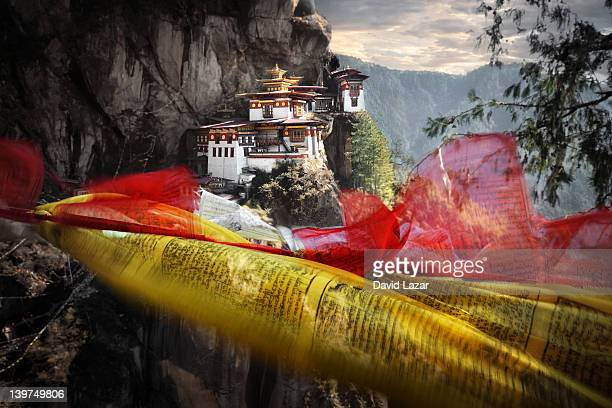 Tigers nest and prayer flags