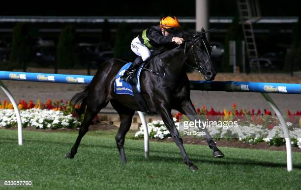 Tigidig Tigidig ridden by Beau Mertens wins William Hill Handicap at Moonee Valley Racecourse on February 03 2017 in Moonee Ponds Australia