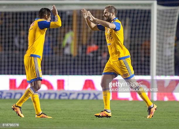 Tigres' Andre Pierre Gignac celebrates with teammates after scoring against Atlas during the Mexican Clausura 2016 tournament football match at the...