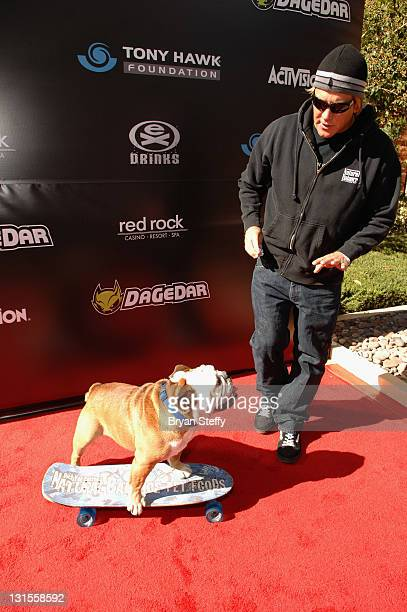 Tillman the skateboarding dog arrives at the Tony Hawk Foundation's Stand Up For Skateparks Benefit At Red Rock Resort In Las Vegas on November 5...
