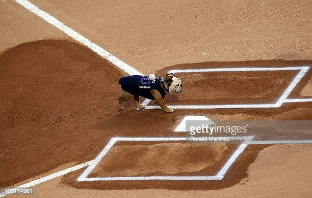 Tillman the Skateboarding Dog delivers the ceremonial first pitch before a game between the Los Angeles Angels of Anaheim and Texas Rangers on July...
