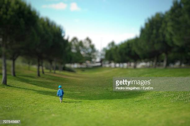 Tilt-Shift Image Of Boy Walking On Grassy Field