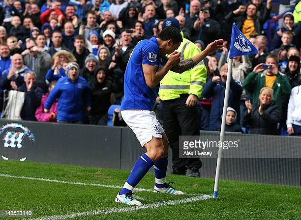Tim Cahill of Everton celebrates after scoring the fourth goal during the Barclays Premier League match between Everton and Fulham at Goodison Park...