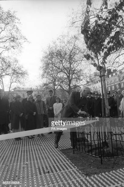 Tim Fletcher the father of murdered WPC Yvonne Fletcher completes the planting of a flowering cherry tree in St James's Square London when a ceremony...
