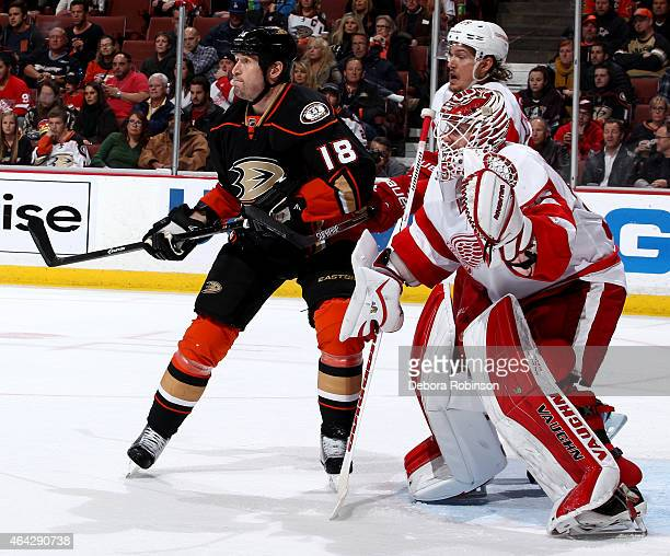 Tim Jackman of the Anaheim Ducks gets into position in front of the net against Jimmy Howard of the Detroit Red Wings on February 23 2015 at Honda...
