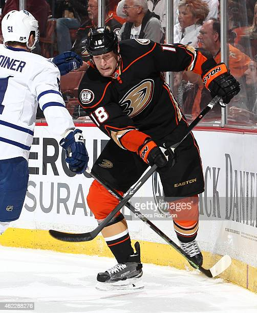 Tim Jackman of the Anaheim Ducks skates against Jake Gardiner of the Toronto Maple Leafs on January 14 2015 at Honda Center in Anaheim California