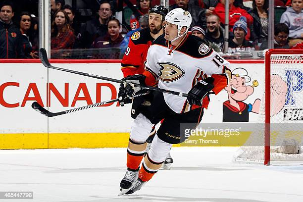Tim Jackman of the Anaheim Ducks skates against the Calgary Flames at Scotiabank Saddledome on February 20 2015 in Calgary Alberta Canada The Ducks...