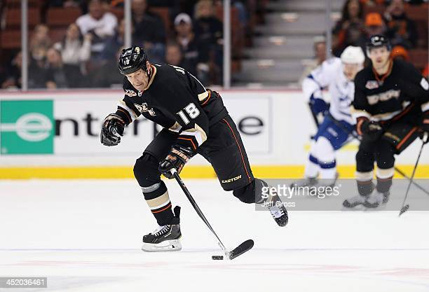 Tim Jackman of the Anaheim Ducks skates against the Tampa Bay Lightning at Honda Center on November 22 2013 in Anaheim California