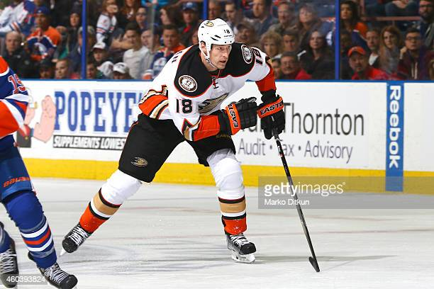 Tim Jackman of the Anaheim Ducks skates during the game against the Edmonton Oilers on December 12 2014 at Rexall Place in Edmonton Alberta Canada