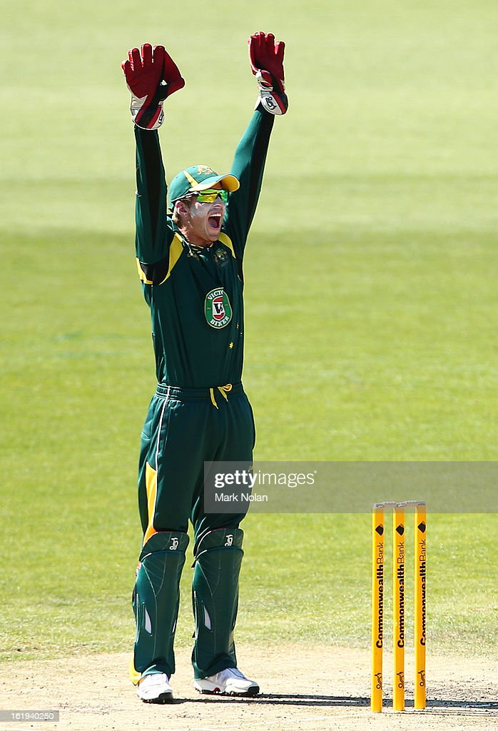 <a gi-track='captionPersonalityLinkClicked' href=/galleries/search?phrase=Tim+Paine&family=editorial&specificpeople=3990549 ng-click='$event.stopPropagation()'>Tim Paine</a> of Australia A appeals for a wicket during the international tour match between Australia 'A' and England at Blundstone Arena on February 18, 2013 in Hobart, Australia.
