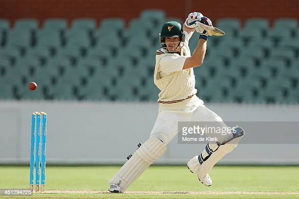 Tim Paine of the Tigers bats during day one of the Sheffield Shield match between the South Australia Redbacks and the Tasmania Tigers at Adelaide...