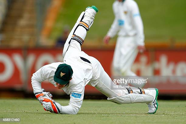 Tim Paine of the Tigers dives for a ball during day four of the Sheffield Shield match between Western Australia and Tasmania at WACA on November 3...
