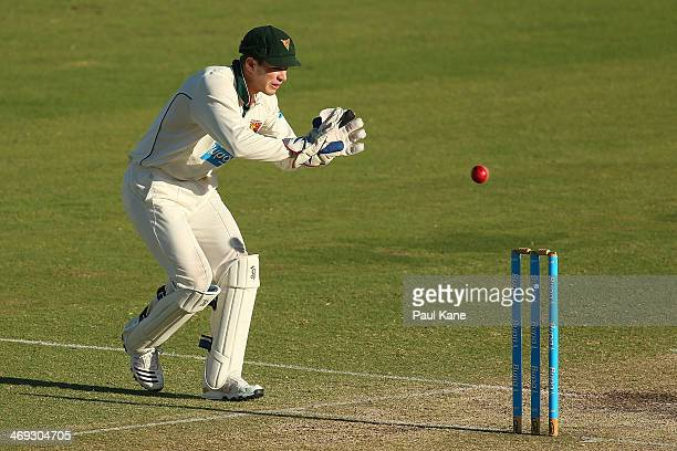 Tim Paine of the Tigers fields a return throw during day three of the Sheffield Shield match between the Western Australia Warriors and the Tasmania...