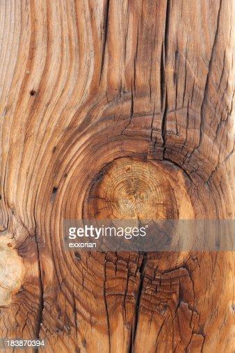 Timber Knot